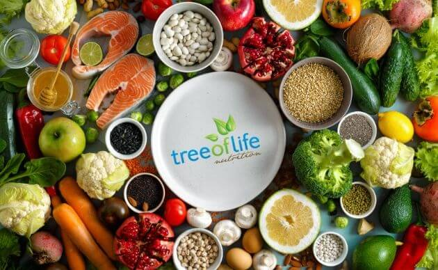 tree of life nutrition brisbane dietitians